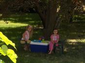Picnic under the plum tree
